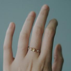 Phum Ring